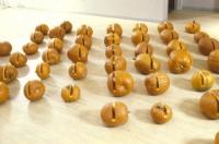 http://rolandgebhardt.com/files/gimgs/th-78_Pumpkins.jpg